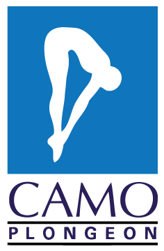 Camo Plongeon
